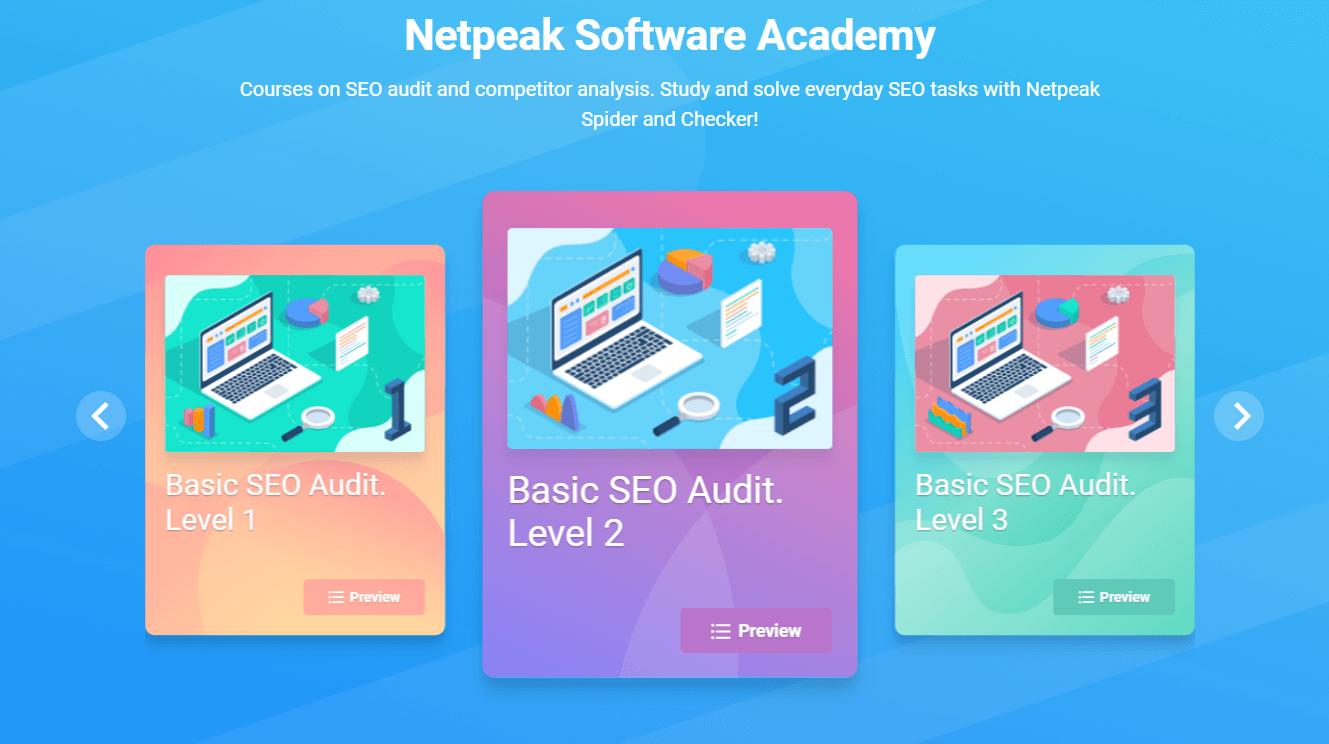 Netpeak Software Academy