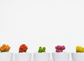 Классификация и типизация запросов