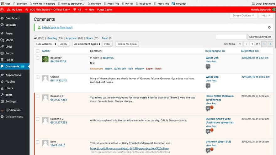 Интерфейс Wordpress
